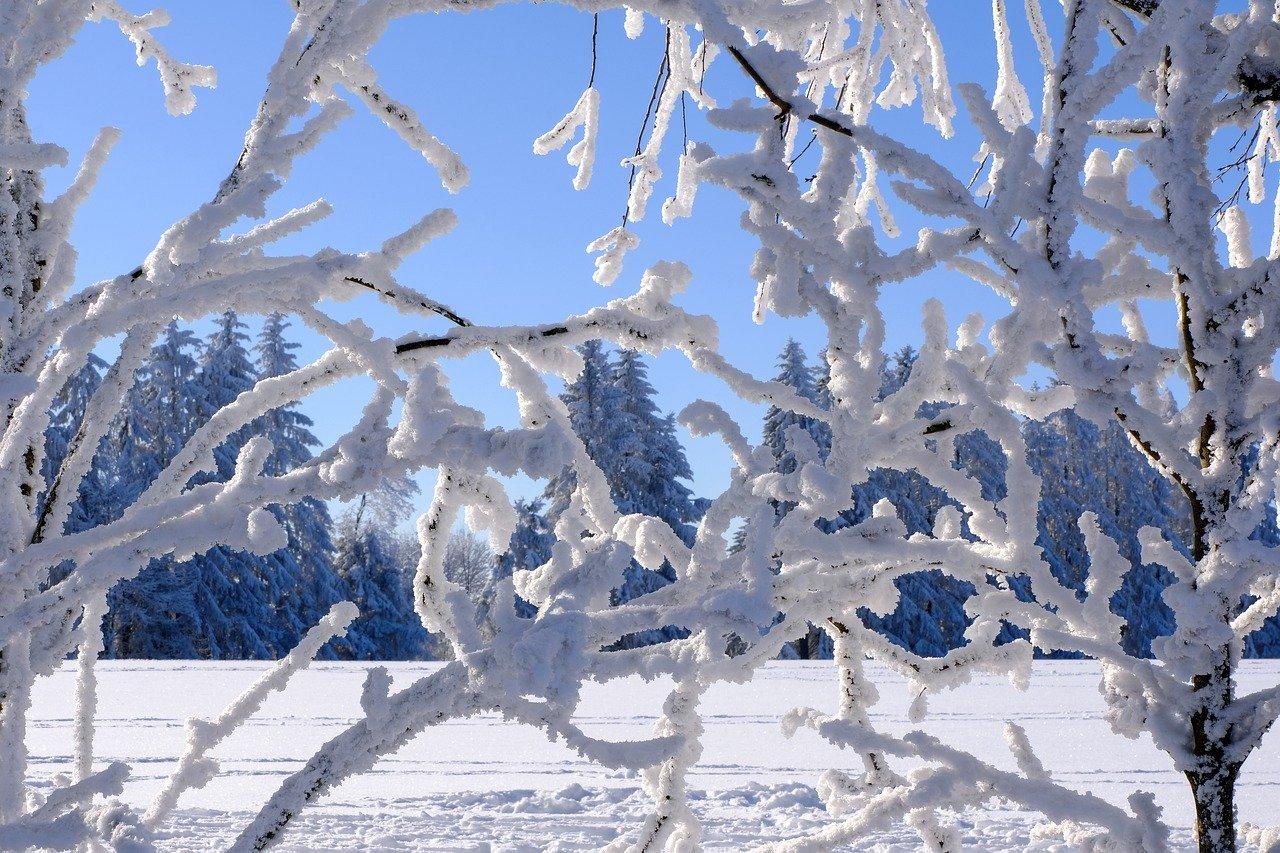 winter, snow, construction pole